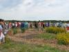 Natural dye garden