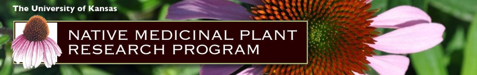 Native Plant Ethnobotany Research Program